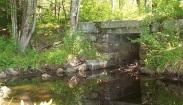 Branch Stream Cattle Tunnel